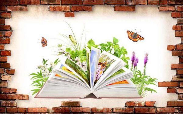 Tranh 3D hiện đại Sách và Hoa