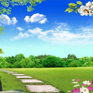 Tranh 3D hiện đại Bầu trời Thảm cỏ xanh