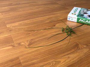 Sàn gỗ công nghiệp Acacia Aqua DS501