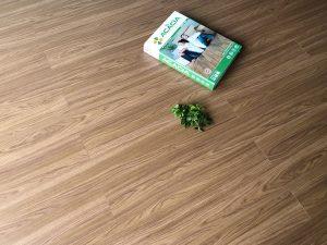 Sàn gỗ công nghiệp Acacia Aqua DS508